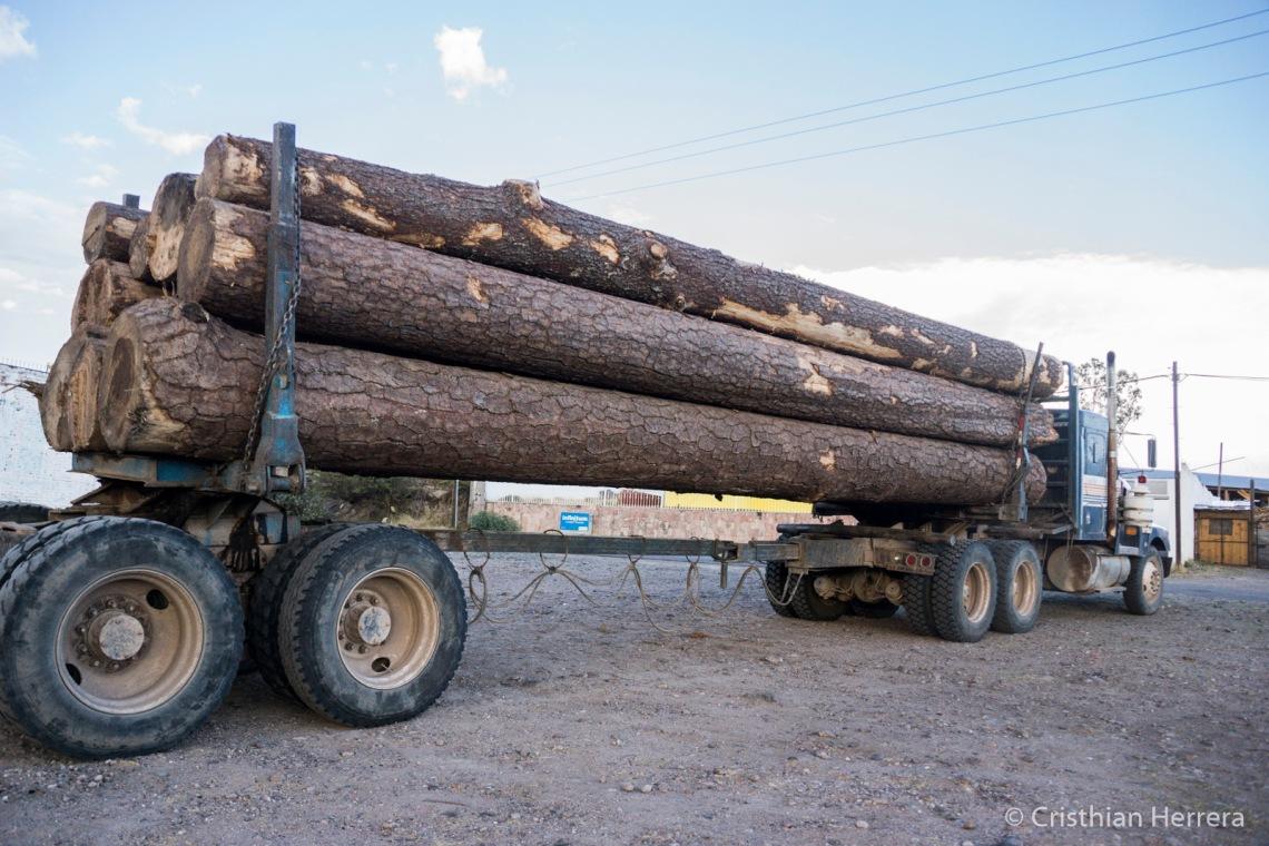 Producción forestal Santiago Papasquiaro - Tierra Mixta - Cristian Herrera 2018