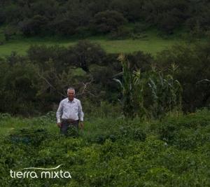 Agua Caliente Santiago Papasquiaro - Tierra Mixta - 2017 - Cristian Herrera (2)