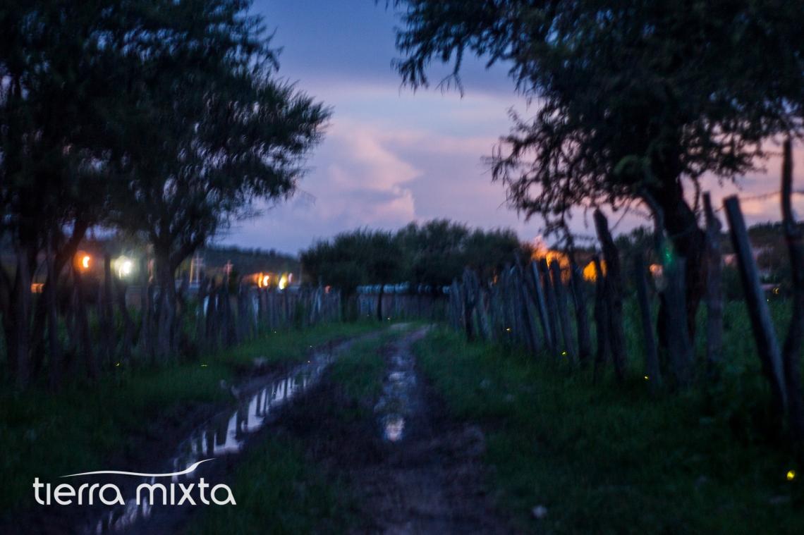 Agua Caliente Santiago Papasquiaro - Tierra Mixta - 2017 - Cristian Herrera (3)
