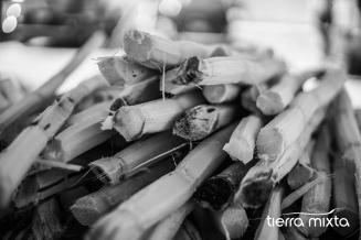 Cañas _ Gastronomía Mexico _ Santiago Papasquiaro _ Diciembre_ 2018 _ Tierra Mixta - Cristian Herrera (3)