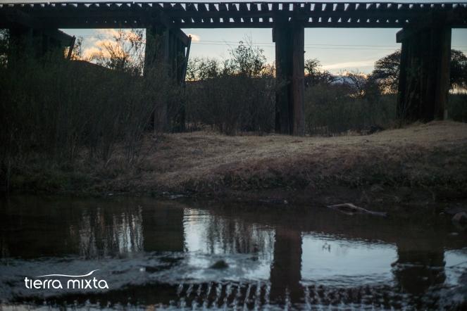 los pinos _ canatlán durango - tierra mixta - cristian herrera - 2019 - pecda (2)
