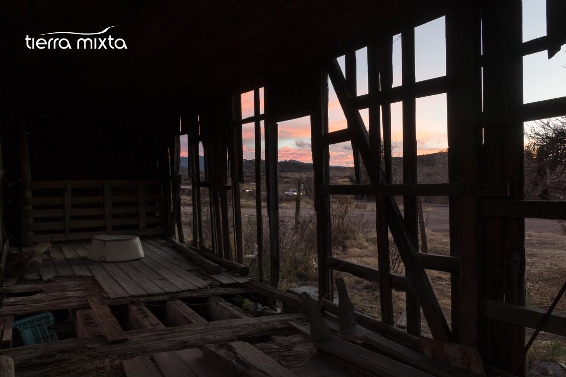los pinos _ canatlán durango - tierra mixta - cristian herrera - 2019 - pecda (3)