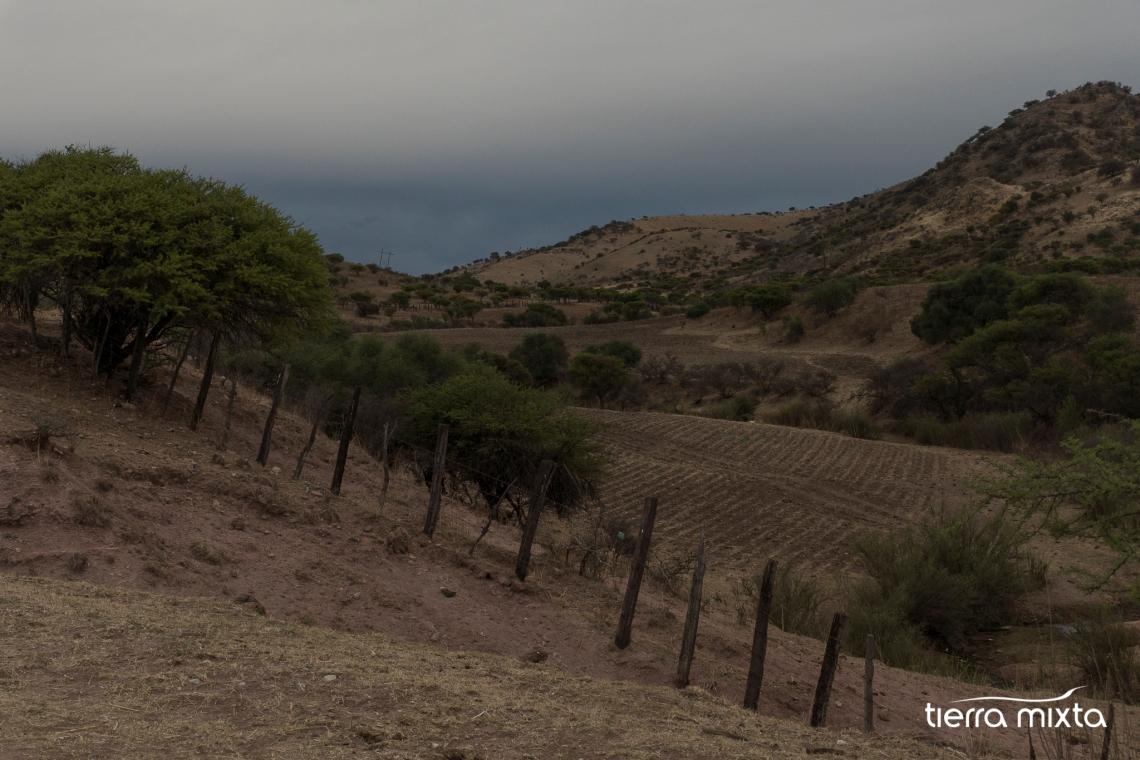 Francisco Javier Leyva _ Santiago Papasquiaro _ Los pueblos del tren _ Cristian Herrera _ PECDA Durango (4)