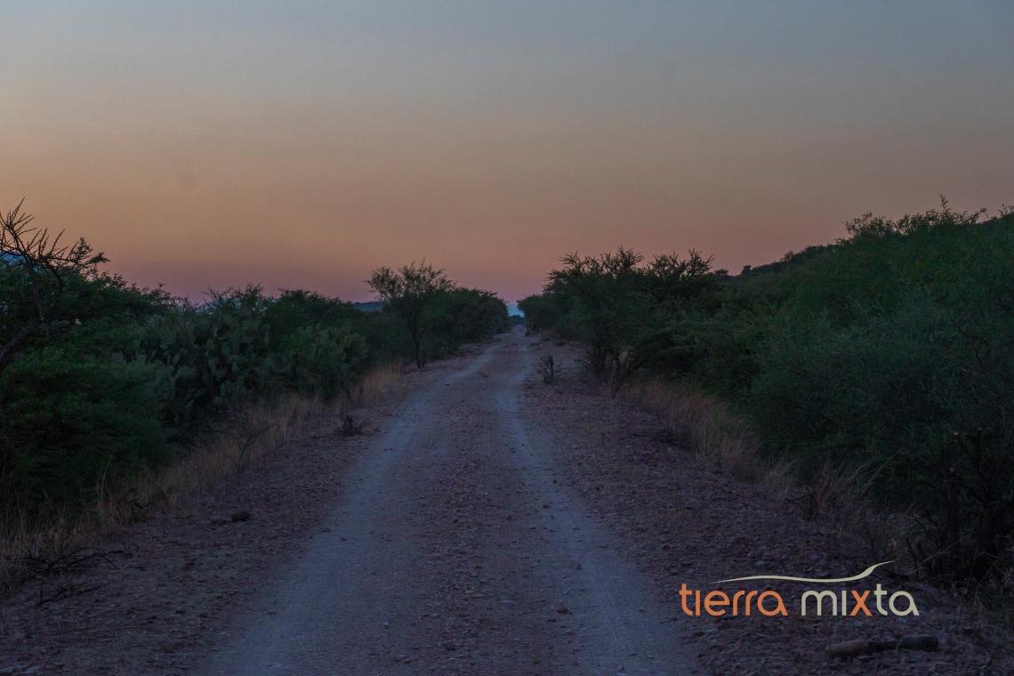 Corrales - Tepehuanes - Los pueblos del tren VII - Tierra Mixta - Cristian Herrera (3)