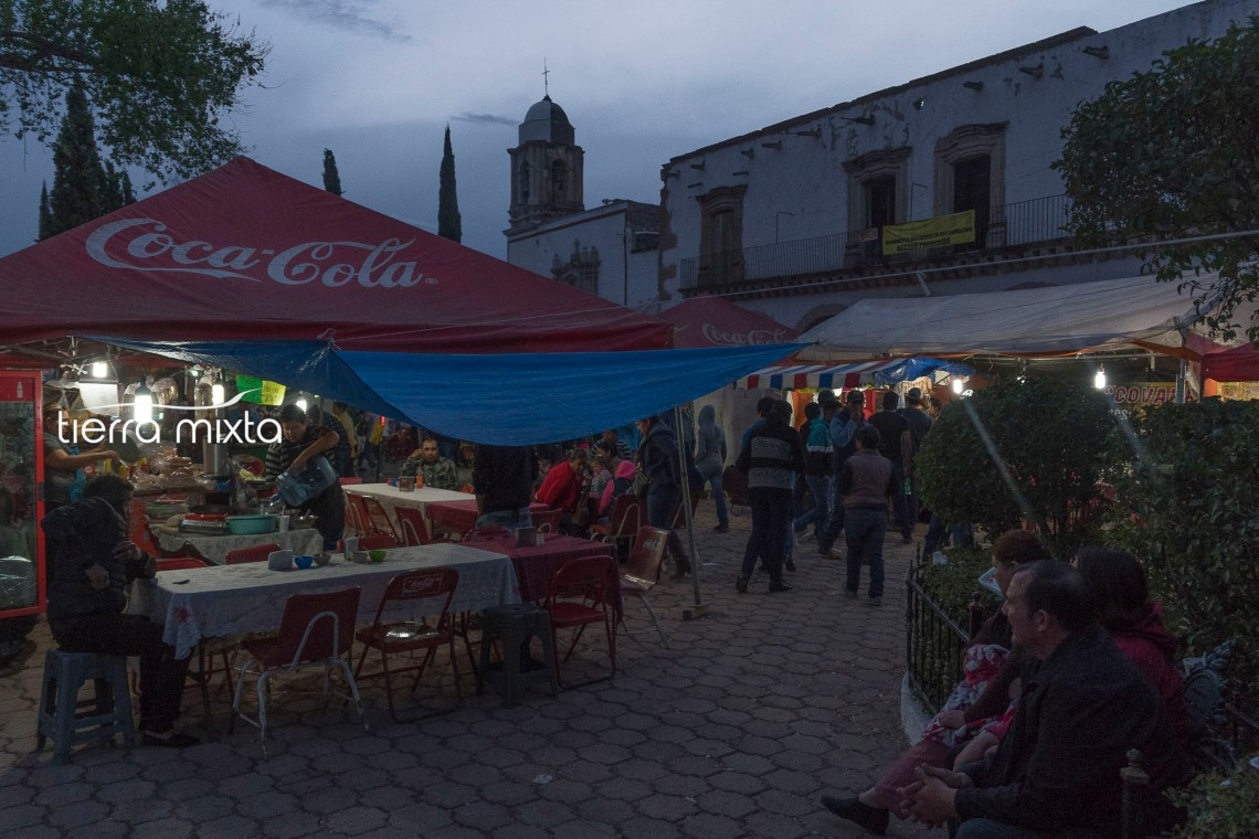 La Sauceda_Tierra Mixta_Cristian Herrera_2020__16